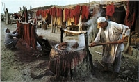 Dyeing wool for persian carpets